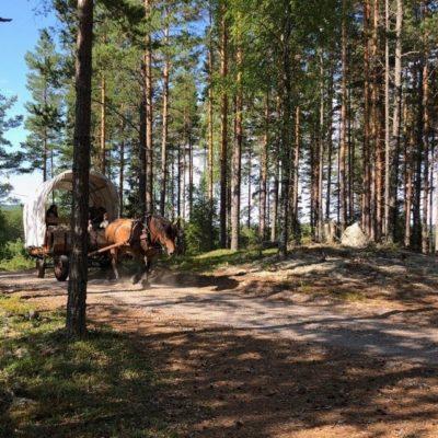paardenbuitenrijden1